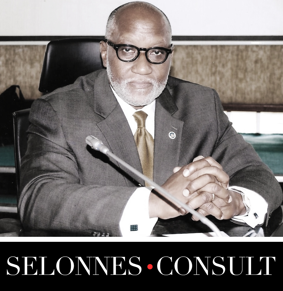 Selonnes Consult